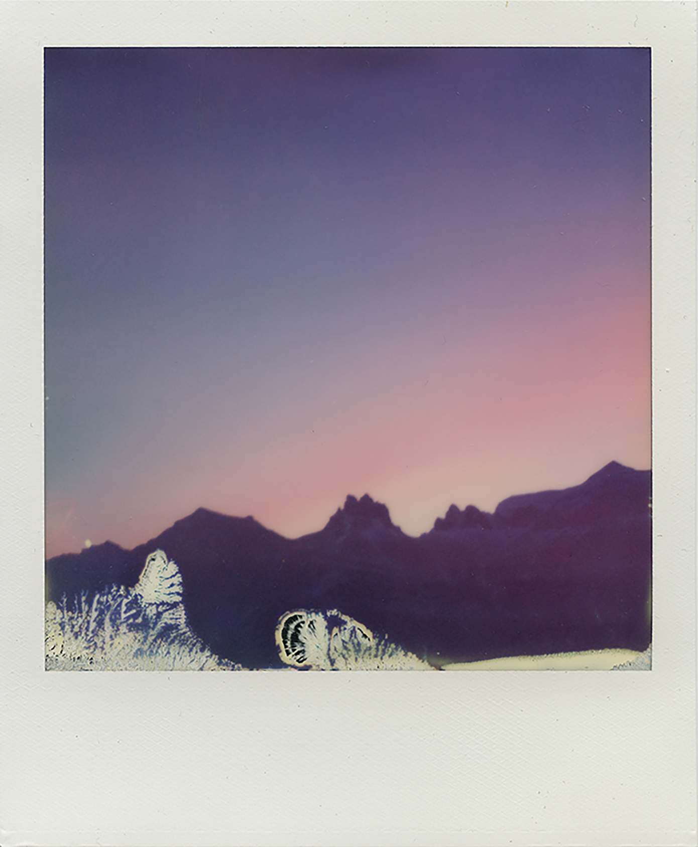 Polaroid Photo by Amy Caterina, January 2017
