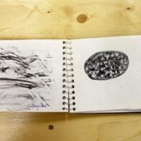 notebook5