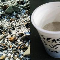 impacthammer result crushed shells